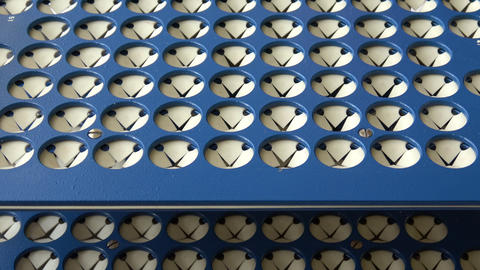 Placing test tubes in rack. Close up view of rack with test tubes in biochemistry laboratory Live Action