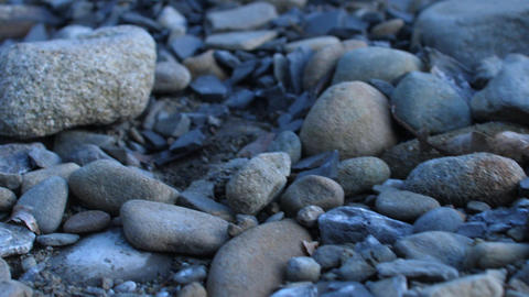 Close up for stones on the river bank Live Action
