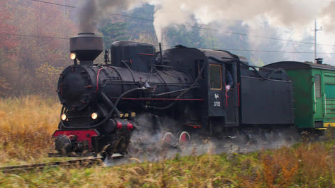 Old narrow-gauge train moving through the forest railway Acción en vivo