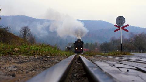 Approaching narrow gauge railway (locomotive) with the mountain view in the background Acción en vivo