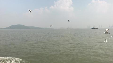 Mumbai, India - calm waters of the Arabian Sea part 3 Live Action