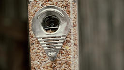 Full of seed bird feeder (no bird) close up stock footage Live Action