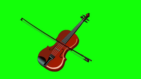 Playing the Violin Isolated on Green Screen Animation