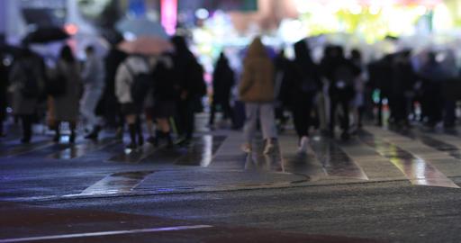Walking people at the crossing in Shinjuku Tokyo rainy day at night handheld ライブ動画
