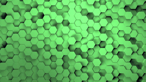 Abstract hexagonal geometry background. Light green hexagonal grid pattern with Live Action