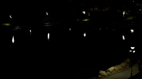 Aerial View Of Park In The Night, Summer Night, Lake, People Walking, Heat Footage