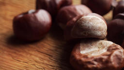 Shiny Conkers in extreme close up stock footage Live Action