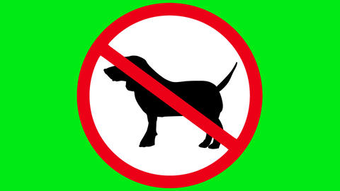 No dogs allowed Animation