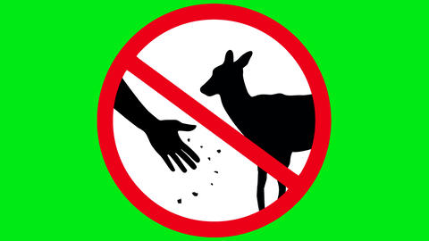 Do not feed the animals on a green background Animation