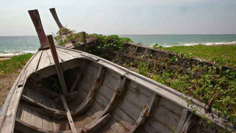 Weeds Grow between Slats of Abandoned Wooden Boats on Thai Seacoast Live Action