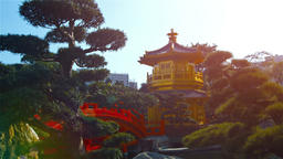Pagoda and Bridge in Gardens of Chi Lin Nunnery in Hong Kong. Video FullHD Footage