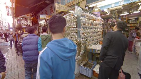 Customers visit famous Fish market in Hong Kong. China Footage