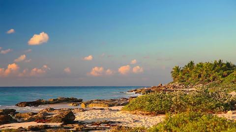 Morning On A Wild Beach Footage