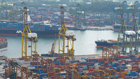 Enormous container cargo ships transiting the channel in Singapore. Video 4k Footage