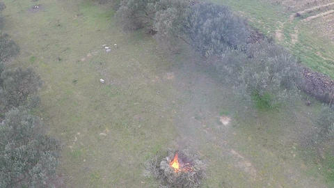 Campfire In The Field 5 Footage