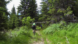 Low angle shot of two bikers riding offroad bicycles Footage