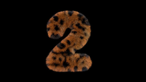 3D animated furry hairy zoo leopard text typeface with alpha channel 2 Animation