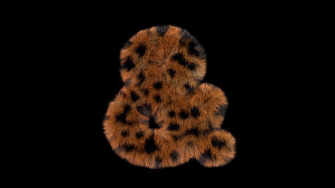 3D animated furry hairy zoo leopard text typeface with alpha channel Ampersand Animation