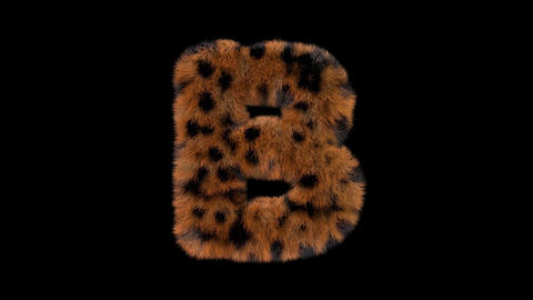 3D animated furry hairy zoo leopard text typeface with alpha channel B Animation