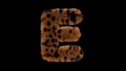 3D animated furry hairy zoo leopard text typeface with alpha channel E Animation