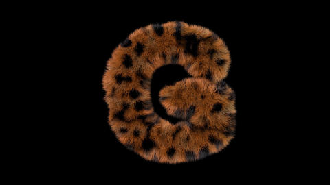 3D animated furry hairy zoo leopard text typeface with alpha channel G Animation