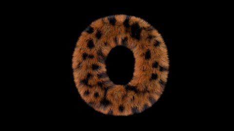 3D animated furry hairy zoo leopard text typeface with alpha channel O Animation
