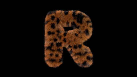 3D animated furry hairy zoo leopard text typeface with alpha channel R Animation