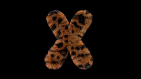 3D animated furry hairy zoo leopard text typeface with alpha channel X Animation