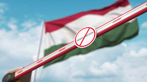 Closed boom gate with no immigration sign on the Hungarian flag background Live Action