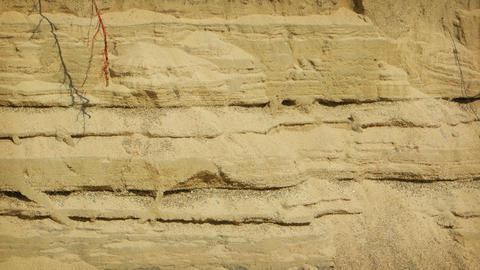 Erosion of sandy soil. Video UltraHD Footage