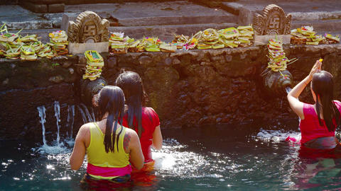 Tirta Empul temple. Holy springs. Locals are swimming. Video UltraHD Footage