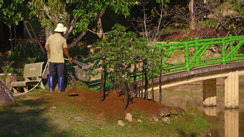 Caretaker watering newly planted trees at a nature park near Dalat. Vietnam GIF