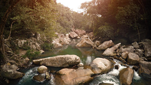 Babbling Brook in the Jungle near Nha Trang. Vietnam. with Sound Footage