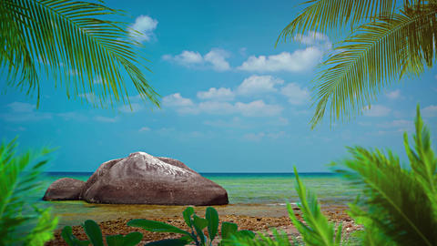 Palm Leaves and an Enormous Boulder over a Tropical Beach Paradise Footage
