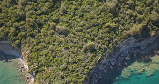 Aerial shot of a coastline of Turkey, forest on top of the cliff, blue seawater Live Action