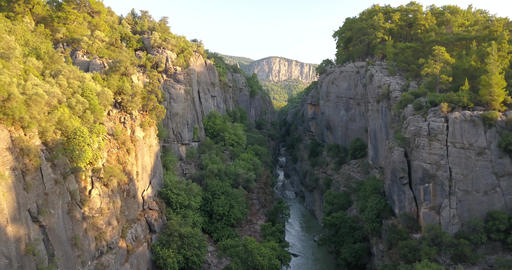 Massive canyon with a river in it, trees surrounding the river, high cliffs, 4k Live Action