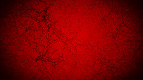 3D loop animation of human blood vessel. Capillaries. Eye blood on red background. Anatomical Animation