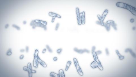 Virus cell in linear shape. Pathogenic viruses causing infection. Loop animation of human virus. Animation