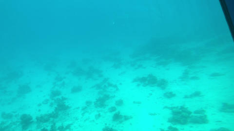 Eilat, Israel - at the depths of the Red Sea through the porthole part 2 Live Action