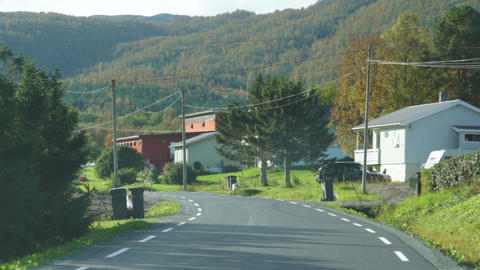 Driving a car on beautiful scenic Norway road in autumn with norwegian cows Live Action