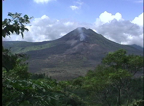 A medium shot of Gunung Agung Volcano in Bali with a jungle of trees in the foreground Footage