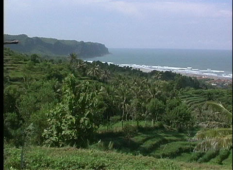 A medium-shot of a terraced hillside and rice paddies along a coastal shore Footage