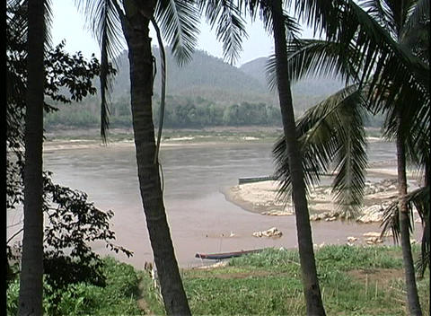 A medium shot of a river, with palm trees in the... Stock Video Footage