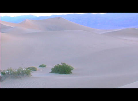 Snow drifts with a few bushes cover a beautiful winter... Stock Video Footage