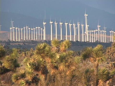 Windmills spin on a wind farm Stock Video Footage