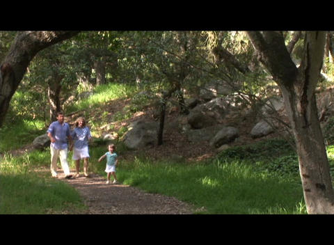 Medium shot of a family walking through a forest Stock Video Footage