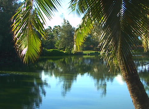 A blue lagoon and swaying palm trees draw the viewer into... Stock Video Footage