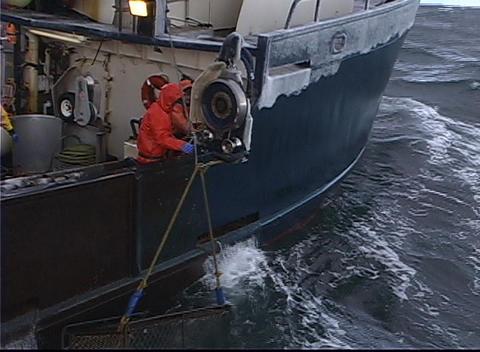 A crane pulls a crab-pot full of fish aboard a vessel Stock Video Footage