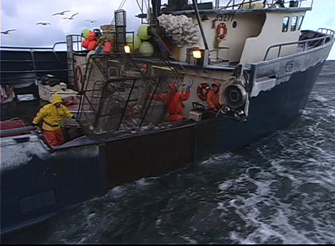 A crane pulls a crab-pot full of fish aboard a vessel Stock Video Footage