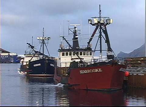 Four crabber vessels rest against the dock in calm waters Footage